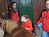 Kroužek MY a mazlení s koníkem 15.11.2014