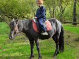 Ozdravný pobyt pro rodiny dětí s PAS-Mazlení s koníkem
